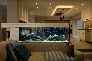 kleines aquarium wohnzimmer aquarium fische und pflanzen. Black Bedroom Furniture Sets. Home Design Ideas