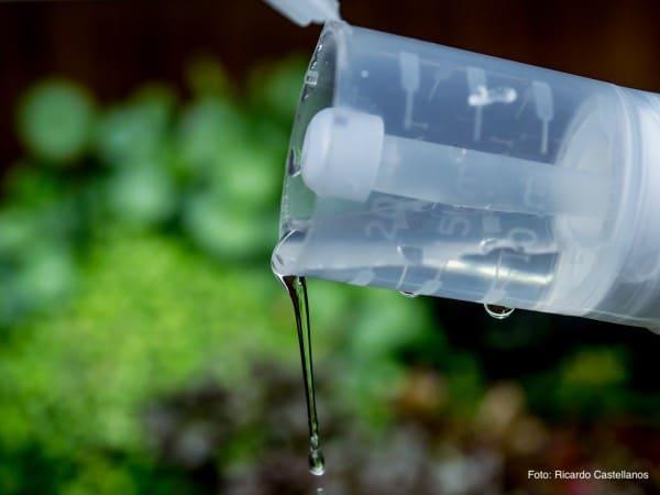 Anti Algen Mittel im Aquarium verwenden